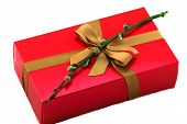 picture of willow  - red gift box with bow and willow - JPG
