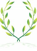 pic of olive shaped  - Illustration of green laurel wreath - JPG