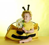 Baby Dressed Up Like A Bee