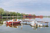 stock photo of marina  - two boats in marina at lake Palic - JPG