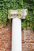 pic of vicenza  - White stone column in the external courtyard of the olimpic theater in Vicenza - JPG