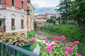 image of vicenza  - Flowered vases on the iron railing of saint Paul bridge in Vicenza and a view of Retrone river and houses at its banks - JPG