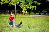foto of blue heeler  - boy and his blue heeler puppy at the park - JPG