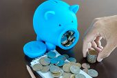 picture of piggy  - Collect money from saving in Piggy Bank Hand holding money from Piggy Bank - JPG
