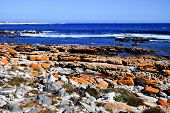 picture of shipwreck  - Shipwreck along the coast of the Cape of Good Hope South Africa - JPG