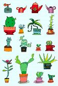 vector collection of  small cactuses in a pots