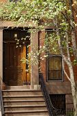 stock photo of brownstone  - Blooming trees before Brooklyn brownstone on Brooklyn Hights neighborhood - JPG