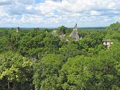 View Over The Old Maya Ruins And The Peten Jungle, Tikal, Guatemala