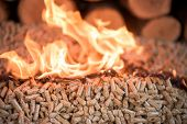 Oak Wood And Pellets In Fire - Heating poster