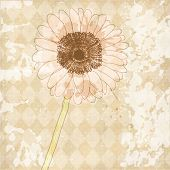 Vintage old paper background with flower, vector texture