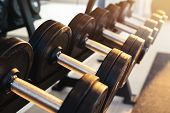 Row Of Dumbbells Set Of Equipment For Weightlifting In Gym poster
