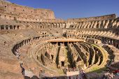 Rome Colosseum Internal Wide
