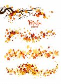 Autumn Leaves Borders. Nature Design Elements Set. Fall Maple Leaves For Decoration. poster