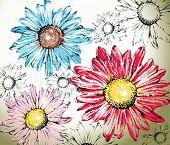 Hand drawn flowers background