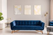Royal Blue Settee Standing In Real Photo Of Light Grey Living Room Interior With Gold Lamps And Thre poster