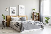 Patterned Blanket On Wooden Bed In Grey Bedroom Interior With Plants And Posters. Real Photo poster
