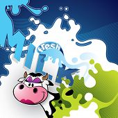 Illustrated milk banner with comic cow.