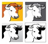 4 variations of Beef Head Illustration in vectors