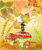 grasshopper singing in the autumn rain