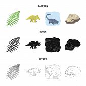 Sea Dinosaur, Triceratops, Prehistoric Plant, Human Skull. Dinosaur And Prehistoric Period Set Colle poster