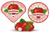 fresh strawberry label, vector illustration