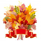 bouquet of autumn leaves, vector editable illustration