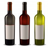 stock photo of wine bottle  - wine bottles with blank label - JPG