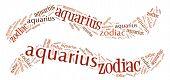 Textcloud: silhouette of aquarius