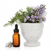 Rosemary herb in a marble mortar with pestle with aromatherapy essential oil bottle over white background.