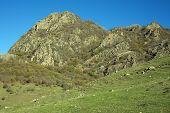 Mountains Of Karachai-cherkess