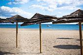 Line Of Parasols At Spanish Beach