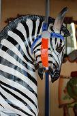 Carousel Zebra Portrait