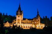 Night View Of Peles Castle - Romania Landmark