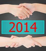Two Woman Hands Isolated On 2014