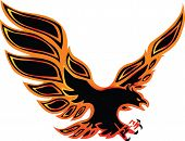 fire eagle symbolic design freedom concept