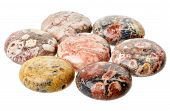 Spotted Jasper Coin Beads