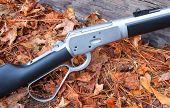 Fall Rifle
