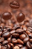 Falling Beans And Dark Roasted Coffee