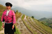 Zhung Chinese Minority Woman At The Longji Rice Terraces Landscape Guilin Province China, April 16,