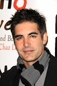 LOS ANGELES - DEC 15:  Galen Gering at the NOH8 Campaign 5th Anniversary Celebration at Avalon on De