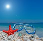 Seastar And Diving Mask