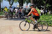 Cyclists in park by the port, Malaga, Spain.