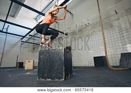 Female Athlete Is Performing Box Jumps At Gym poster