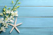 Starfish and orchid flower on wooden background