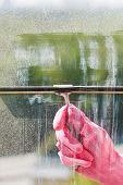 Hand In Pink Glove Washes Window Pane By Squeegee