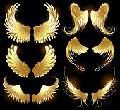 Golden Wings Of Angels.