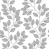 Tree Branch Seamless Pattern In Black And White