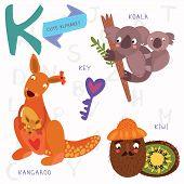 image of kangaroo  - Alphabet design in a colorful style - JPG