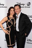 LOS ANGELES - MAY 19:  Bellamy Young, Tony Goldwyn at the Disney Media Networks International Upfronts at Walt Disney Studios on May 19, 2013 in Burbank, CA