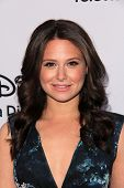 LOS ANGELES - MAY 19:  Katie Lowes at the Disney Media Networks International Upfronts at Walt Disne